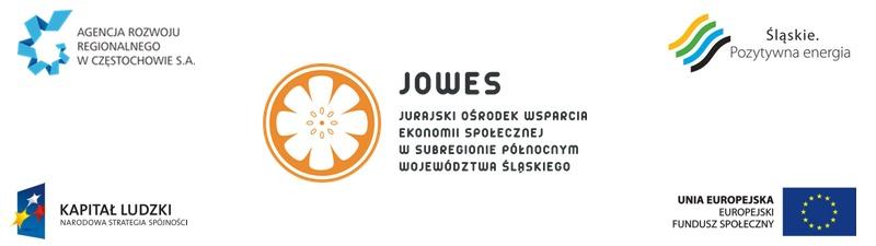 Kwestionariusz ankietowy skierowany do podmiotów ekonomii społecznej subregionu północnego województwa śląskiego